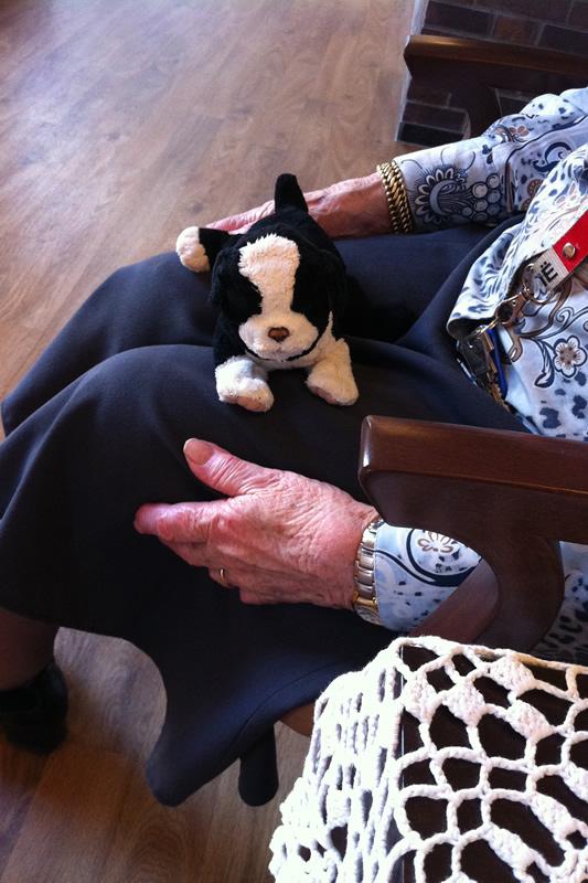 demente vrouw met knuffelhond op schoot